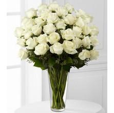 Elegant White Roses - 36 Stems In Vase