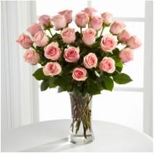 Elegant Outlooks - 24 Stems In Vase