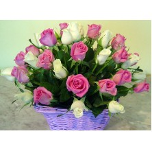 Passionate Affection - 24 Stems Basket