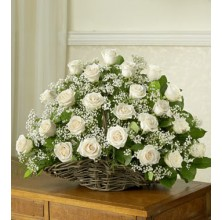 Representing Innocence - 36 Stems In Basket