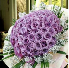 Lavender Love - 36 Stems In Bouquet