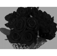 Black Romance - 18 Stems Basket