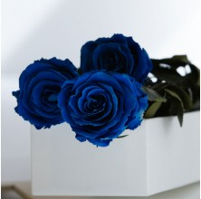 Royal Sapphire - 3 Stems In Bouquet