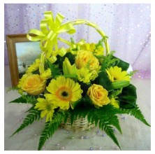 Double Dip Green - 12 Stems Basket
