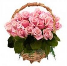 Blooming Love - 24 Stems In Basket