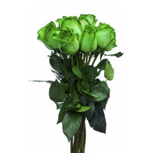 Blooming Green - 6 Stems Bouquetretdrteeey
