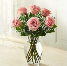 Gorgeous Peach - 6 Stems Vase