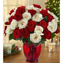 Best Wishes Roses - 36 Stems Vase