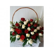 Splendid Roses - 36 Stems Basket