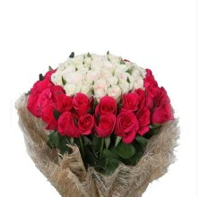 Splendid Roses - 36 Stems Bouquet