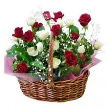 Ultimate Elegance - 24 Stems Basket