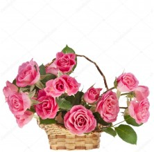 Wonderful Pink - 12 Stems Basket