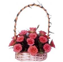 Dazzling Her Day - 24 Stems Basket