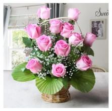 Classic Romance  - 12 Stems Basket