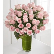 Divine Moments - 36 Stems Vase