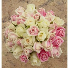 Elegant White and Pink - 36 Stems Bouquet
