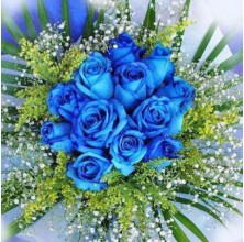 Out of the Blue - 12 Stems Bouquet
