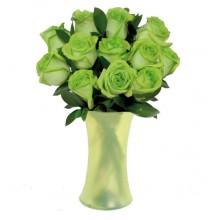 Green Royal - 12 Stems In Vase