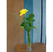 Just Because - 1 Stem Vase