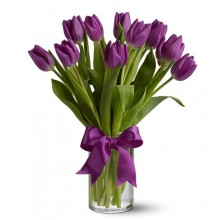 Purple Tulips 12 Stems