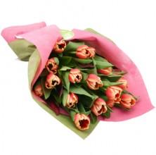 Orange Tulips - 15 Stems