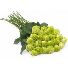 Floral Jewel - 24 Stems Bouquet