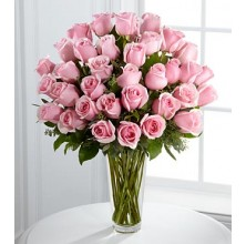 Soft Pink - 36 Stems In Vase