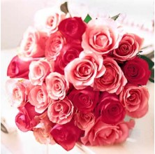 Sweetheart Roses - 24 Stems Bouquet