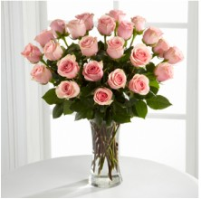 Elegant Outlooks - 24 Stems In Vase