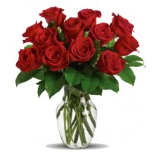 1 Dozen Red Roses - 12 Stem Vase