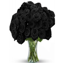 Black Magic - 24 Stems Vase