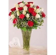 Splendid Roses - 36 Stems Vase