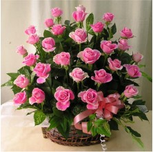 Pink Beautiful - 36 Stems Basket