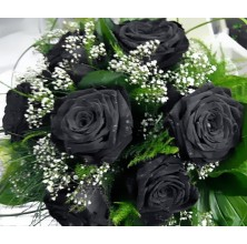 Black Roses - 6 Stems Bouquet