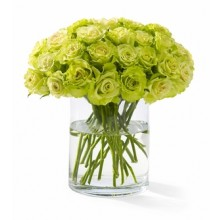 The Color of Your Day - 48 Stems In Vase