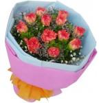 Carnations - 10 Stems Bouquet