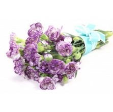 Purple Carnations - 10 Stems Bouquet