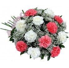 Pink & White Carnations - 20 Stems Bouquet