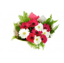Pink and White Gerbera - 12 Stems Bouquet