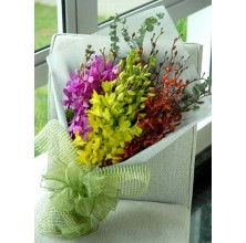 Assorted Orchid - 30 Stems Bouquet